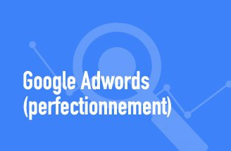 Google Adwords (perfectionnement)